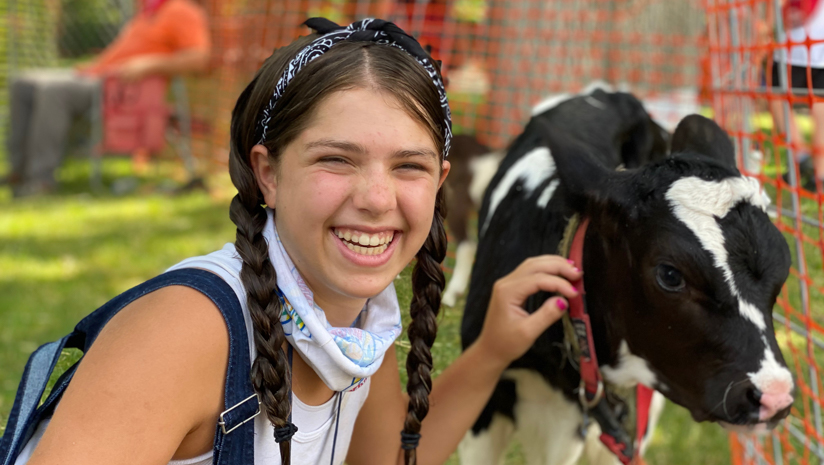 Older girl camper petting a baby cow
